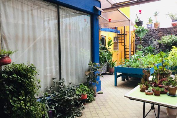 Departamento Amueblado en Renta Colonia Irrigación, Presa Palmito.