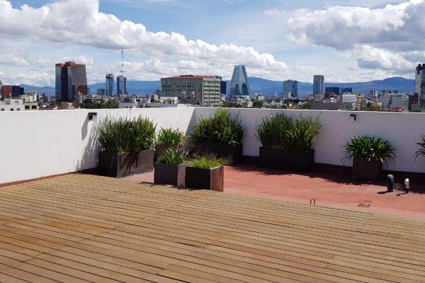 Departamento en renta, sobre Av. Revolución con Roof garden común